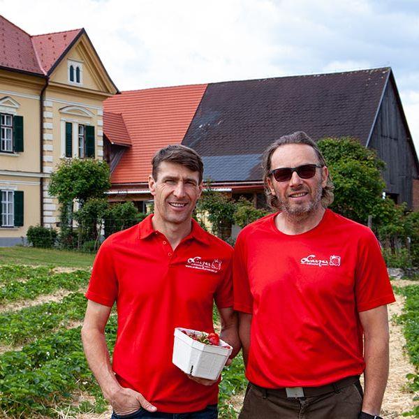 Lierzer - Erdbeerhof